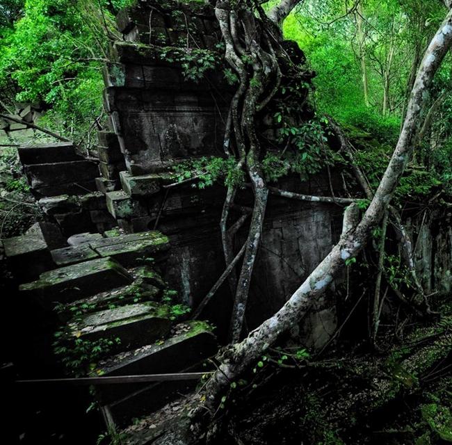 Dark Fiends of the Jungle